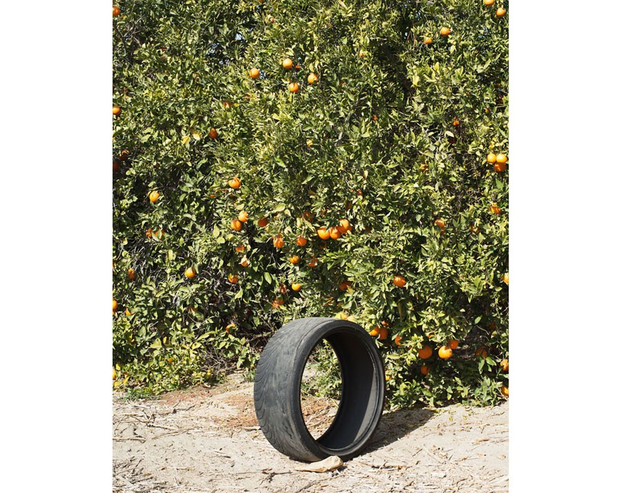 © Ron Jude, Citrus #1 (w/ Tire), 2013, From The Series 'Lago', 77.75 X 63.5 Cm, Archival Pigment Print On Fiber Paper Mounted To DiBond